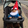 Photo #2 - Traveling Gnome