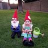 Photo #2 - Garden Gnomes