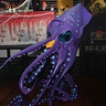 Photo #2 - Giant Squid