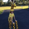 Photo #1 - Giraffe Costume