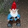 Photo #1 - Gnome