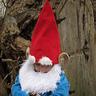 Photo #7 - Gnome