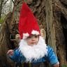 Photo #10 - Gnome