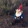 Photo #2 - Gnome