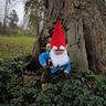 Photo #4 - Gnome