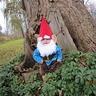 Photo #5 - Gnome