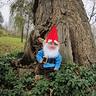 Photo #6 - Gnome