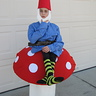 Photo #1 - Gnome on a Toad Stool