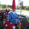 Photo #5 - Gnome on a Toad Stool