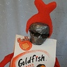 Photo #2 - Goldfish Piranha