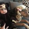 Photo #3 - Goldilocks and the Three Bears