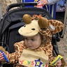 Photo #7 - Geoffrey the giraffe discovers candy