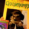 Photo #2 - Goosebump Book
