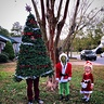 Photo #4 - Grinch Christmas Theme