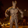 Photo #1 - I AM GROOT!