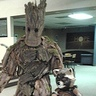 Photo #1 - Groot from Guardians of the Galaxy