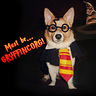 Photo #2 - Jayden was sorted into Gryffincorg!