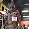 Photo #2 - Groot from Guardians of the Galaxy