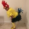 Photo #1 - Heihei, Moana's friendly chicken