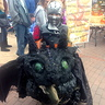 Photo #2 - Hiccup and Toothless