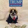 Photo #2 - Trump