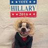 Photo #3 - Hillary