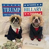 Photo #4 - Hillary and Trump