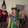 Photo #4 - Hocus Pocus