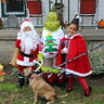 Photo #2 - How the Grinch Stole Halloween