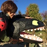 Photo #6 - How to Train Your Dragon Hiccup