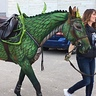 Photo #2 - How to turn a Horse into a Dragon