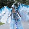 Photo #3 - Ice Phoenix