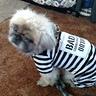 Photo #2 - Inmate Prisoner