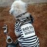 Photo #1 - Inmate Prisoner