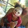 Photo #3 - IT the Clown
