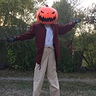 Photo #2 - scarecrow pumpkin head jack skellington