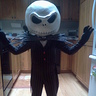 Photo #2 - Jack the Pumpkin King