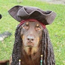 Photo #2 - Bob as Jack Sparrow
