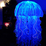 Photo #1 - Jellyfish Costume 2016