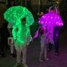Photo #3 - Jellyfish