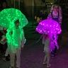 Photo #5 - Jellyfish