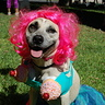 Photo #1 - Chiquitina rocking her Katy Perry in California Gurls outfit