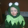 Photo #1 - Kermit the Frog