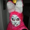 Photo #1 - Killer Rabbit