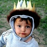 Photo #1 - King of All Wild Things