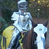 "Photo #1 - Knight in ""Shiny"" Armour"