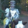 Photo #2 - Knight in Shiny Armour