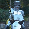 Photo #3 - Knight in Shiny Armour
