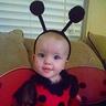 Photo #1 - Lady Bug