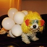 Photo #5 - Coco as Lady Gaga